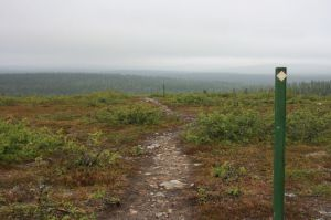 Kiilopää , 6 km Nature-trail