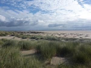 Hors, Texel