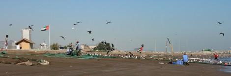 Strand Fujairah